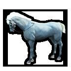 黑色沙漠[!--Tier--]世代马